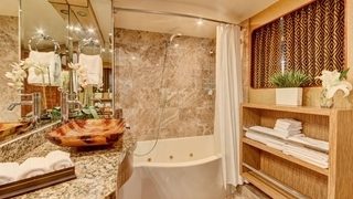 Master Head with Jacuzzi tub and shower